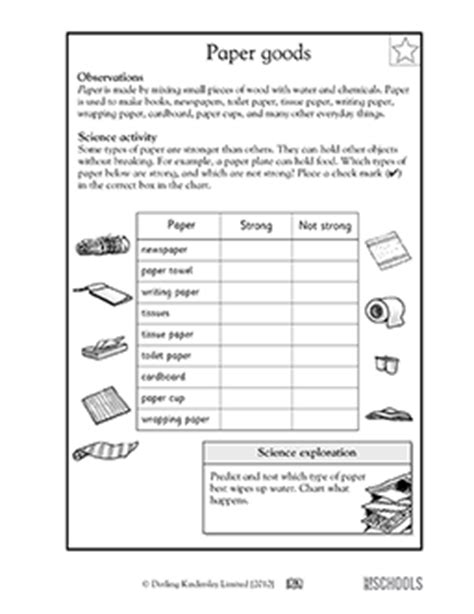 st grade  grade kindergarten science worksheets