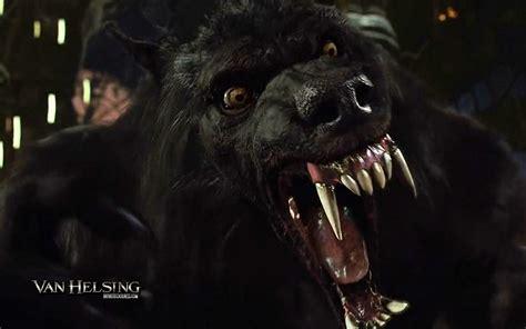 van helsing werewolf wallpapers hd resolution earthly