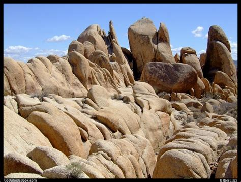 scenes  joshua tree national park california