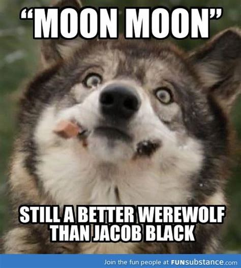 Funny Wolf Memes - what s your werewolf name google search funny stuff that makes you go huh pinterest moon
