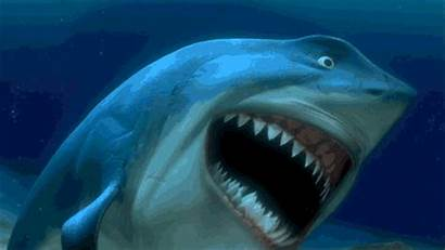 Sharks Jaws Finding Nemo Cool Bruce Why