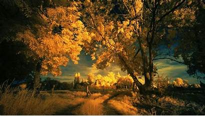 Autumn Sky 4k Yodobi