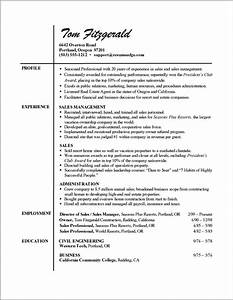 professional resume formats examples