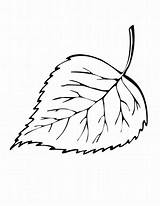 Leaf Coloring Fall Pages Printable sketch template