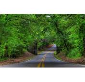 Green Forest Stone Bridge Road Wallpapers