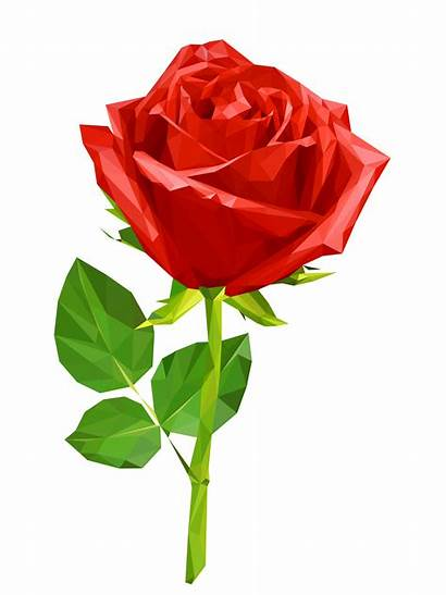 Rose Vector Polygon Realitic Flower Eps Graphics