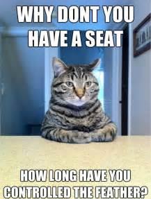 cat memes cat memes image memes at relatably