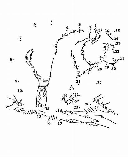 Dot Dots Wolf Printable Coloring Pages Connect