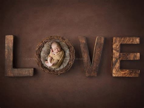 newborn photography digital backdrop  boys  girls