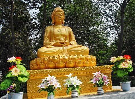 According to traditional dating, shakyamuni buddha, also known as gautama buddha, lived from 566 to 485 bce in central north india. Stock Pictures: Golden Buddha Statue