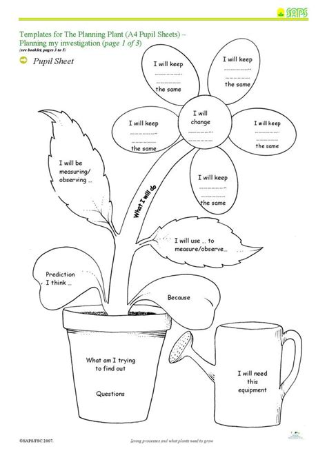 investigating  plants grow   fertiliser stem