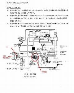 Blitz Dual Sbc Wiring Diagram
