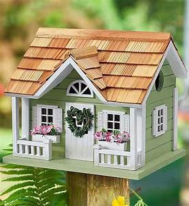 Pin, By, All, Birds, Need, A, Home, On, Making, Bird, Houses
