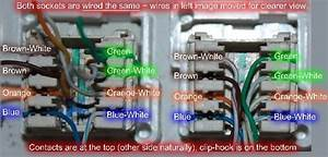 Network Socket Wiring Diagram