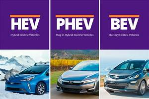The Different Types Of Electric Vehicles
