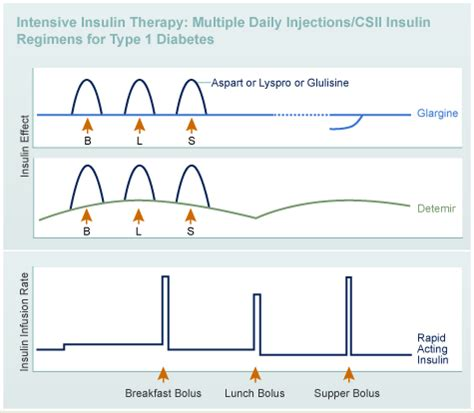 designing  insulin regimen diabetes education