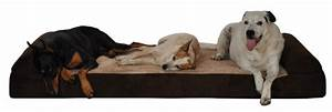 big dogs beds pillow dog beds With dog bed for 2 large dogs