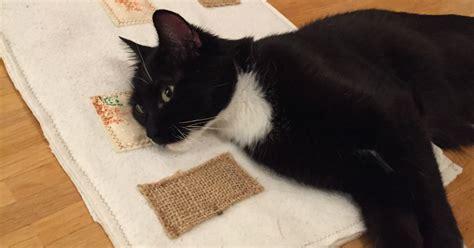 Diy-knisterdecke Für Katzen