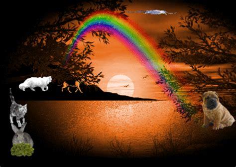 die regenbogenbruecke