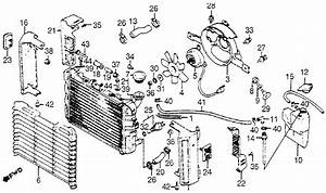 2003 Ford Focus Radiator Hose Diagram