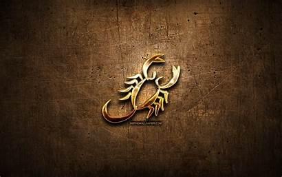 Scorpio Zodiac Metal Golden Signs Astrology Symbol