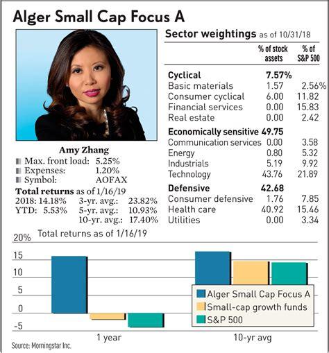 small cap stocks  alger portfolio   top