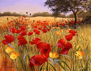 Imágenes Arte Pinturas: Vistas De Campos Naturales Con