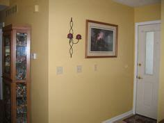 1000 images about living room color schemes on