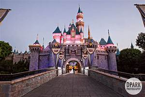 Disneyland Castle and Hotel Wedding | Celebrity ...