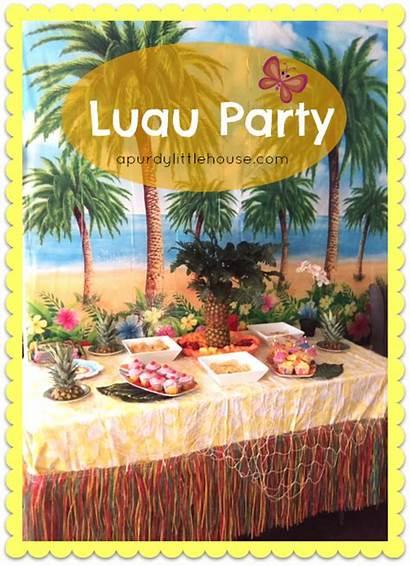 Luau Party Birthday Tiki Decor Bar Diy