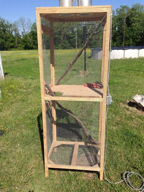 iguana cage ideas  pinterest snake enclosure snake terrarium  lizard cage
