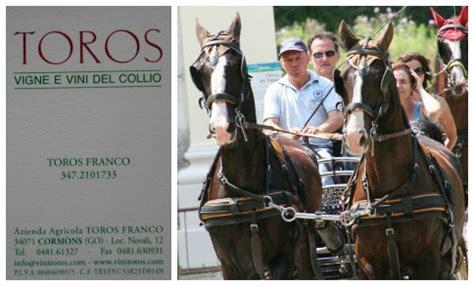 carrozze cavalli usate 4 176 successo per la classica trottata dei colli goriziani