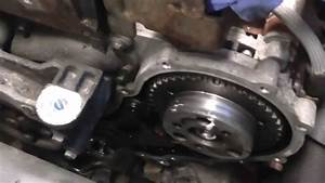 Ford 1 8 Tdci Wet Belt Timing Belt