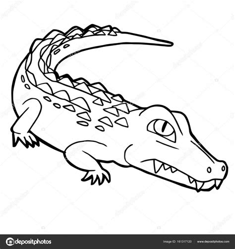 Krrrr Okodil Kleurplaat by Leuke Krokodil Tekenfilm Kleurplaten Pagina Vector