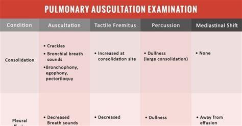 pulmonary auscultation examination cheat sheet nclex quiz