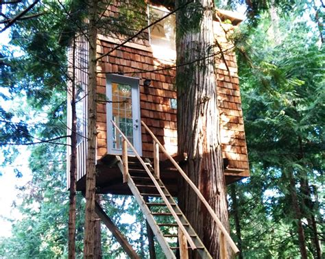 'raven Loft' Is A Small, Sustainable Treehouse Home In Bc