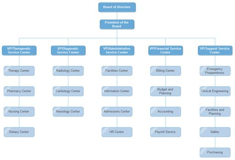 hospital org chart examples org charting