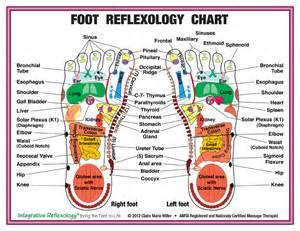 Foot Massage Reflexology Chart Printable
