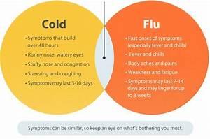 Cold  U0026 Flu - Causes  Symptoms  U0026 Treatment