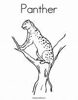 Coloring Panther Jaguar Leopard Snow Noodle Pages Animal Outline Twisty Twistynoodle Built California Usa Tracing Login Favorites Ll sketch template