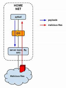 Pytbull  Prevention System  Ids  Ips