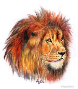 Color Pencil Lion Drawing