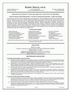 Executive resume template e commercewordpress for Executive resume template