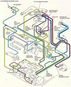 2005 Ford F150 Vacuum Diagram
