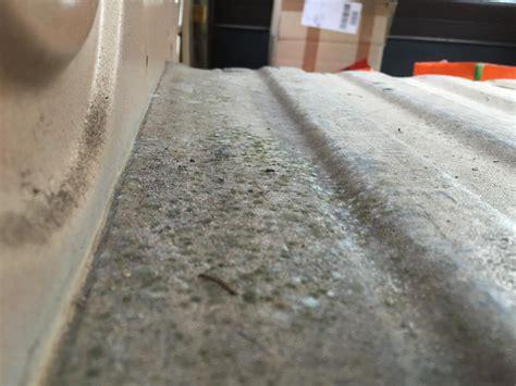 hilft essig gegen schimmel hilft essig gegen schimmel f premium mit gegen schimmel with hilft essig gegen schimmel