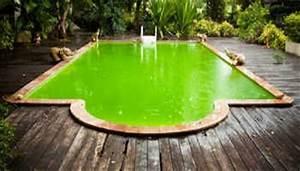 comment rattraper leau dune piscine verte With l eau de ma piscine est verte que faire