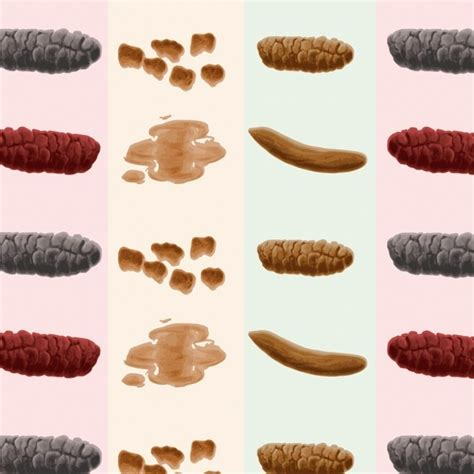 Large Amounts Of Blood In Stool - how your poo could reveal a lot about your health