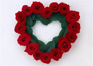Beautiful Stylish Flowers Photo Frames   DOWNLOAD ...