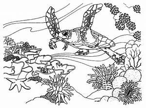 Free Online Coloring Page To Download U0026 Print
