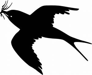 Black Birds Flying Drawing
